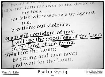 psalm2713